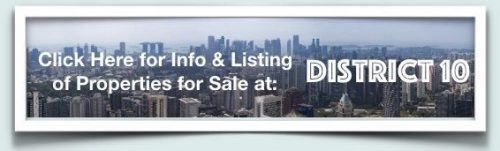 district 10 properties for sale singapore